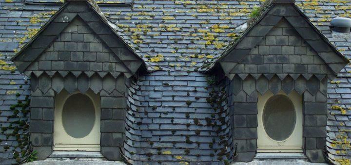 démoussage de toiture